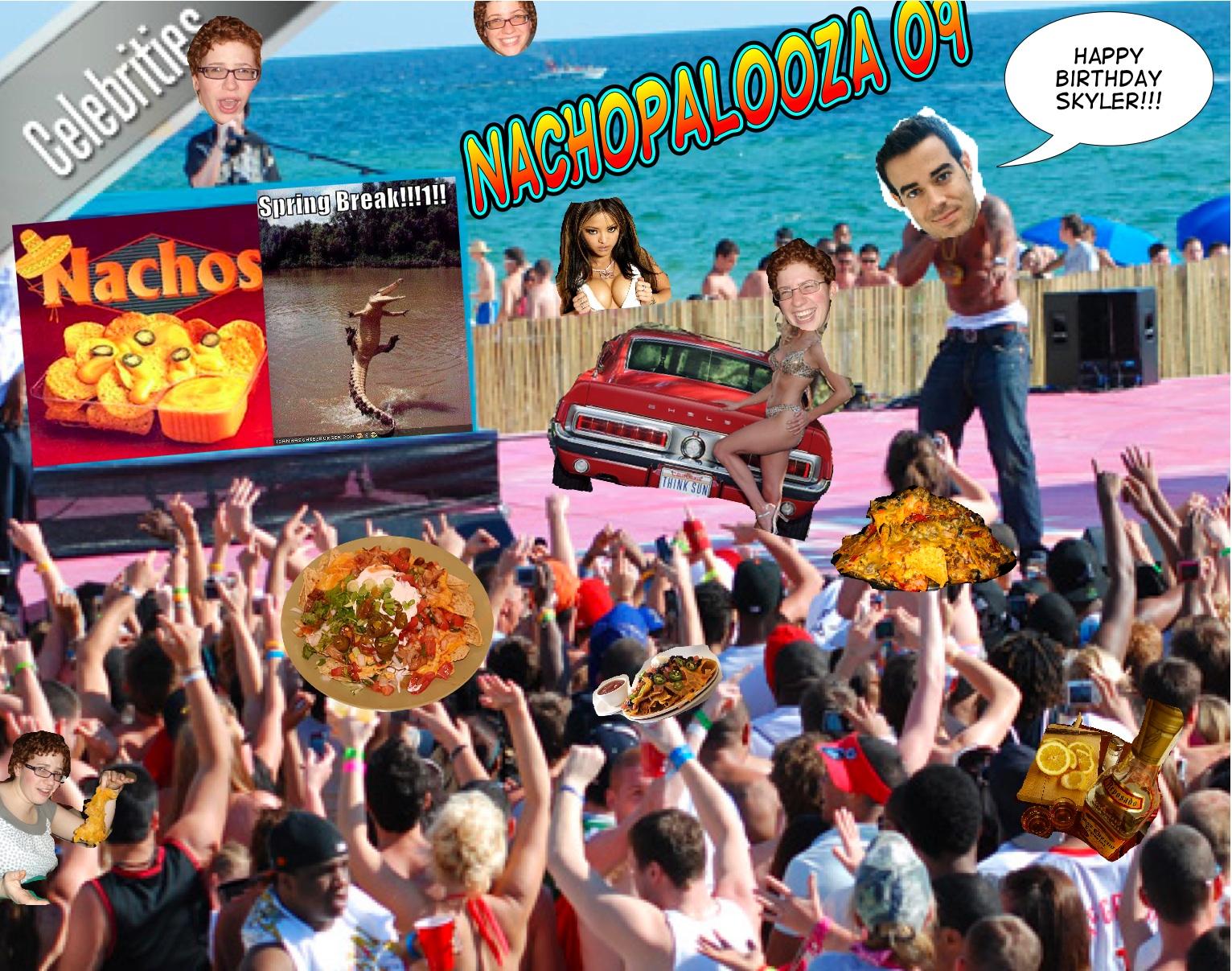 Party Nachos Recipes — Dishmaps